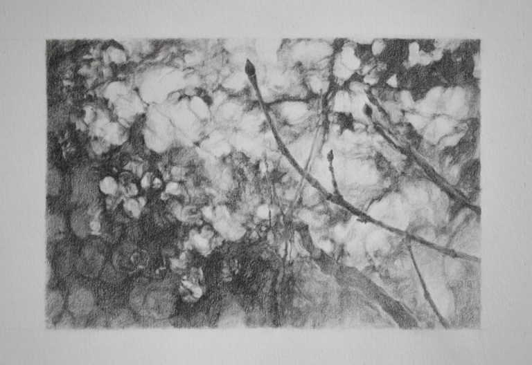 Graphite on paper, 14.8 x 21 cm