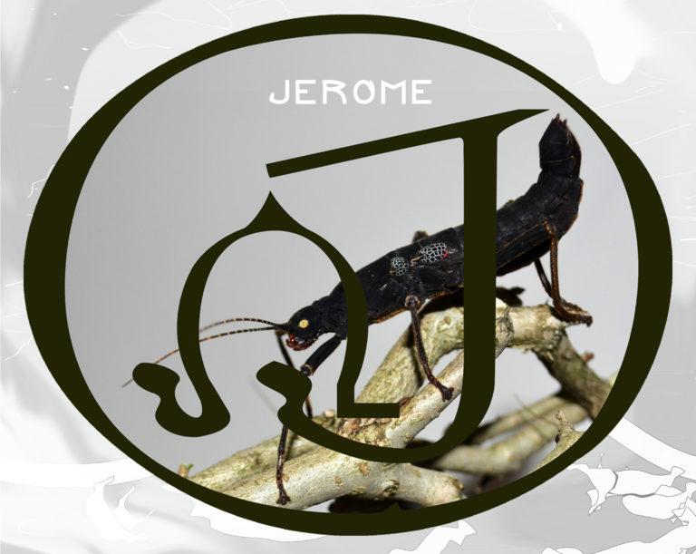 #JeromeGardening#JeromeSpring18#StickCultivation#JeromeLifestyle