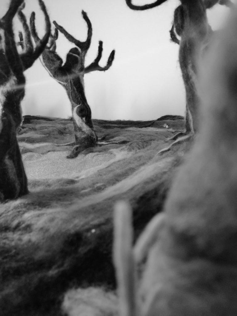 Foto van de set gemaakt uit vilt.