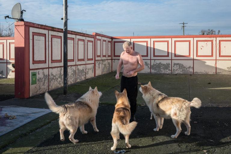 Johnny Keenan feedings his dogs in Finglas, Dublin.
