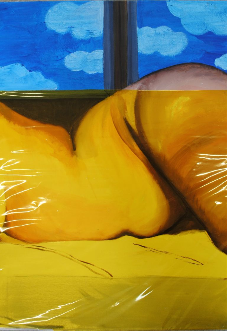 Sleeping Beauty: De Androgyn (ongecensureerd), 50x70, olieverf en acryl op canvas en cellofaan
